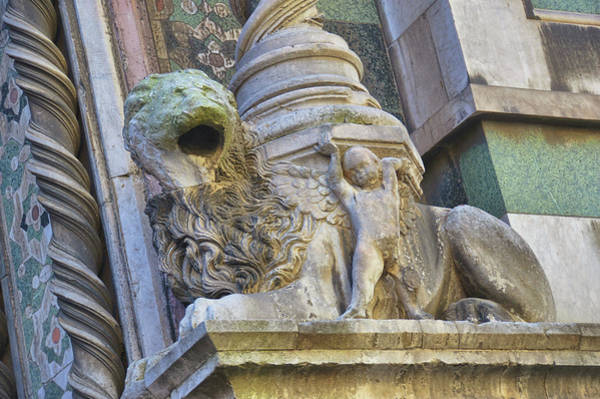 Photograph - Symbol Of Firenze by JAMART Photography