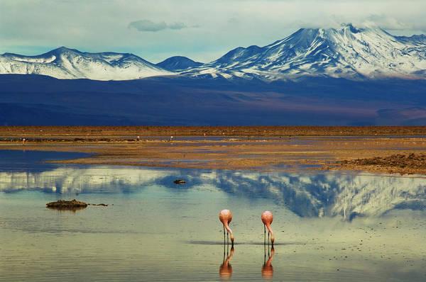 Salar De Atacama Photograph - Symetry by By Philippe Reichert