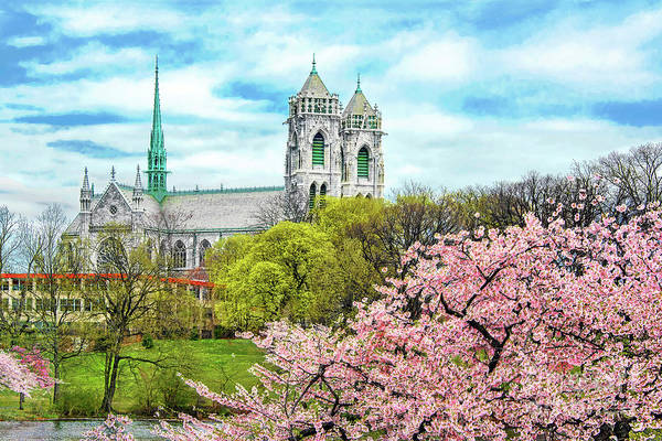 Sacred Heart Photograph - Symmetry In Spring Glory by Regina Geoghan