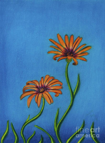 Osteospermum Painting - Symphony Sway by Dorothy Lee