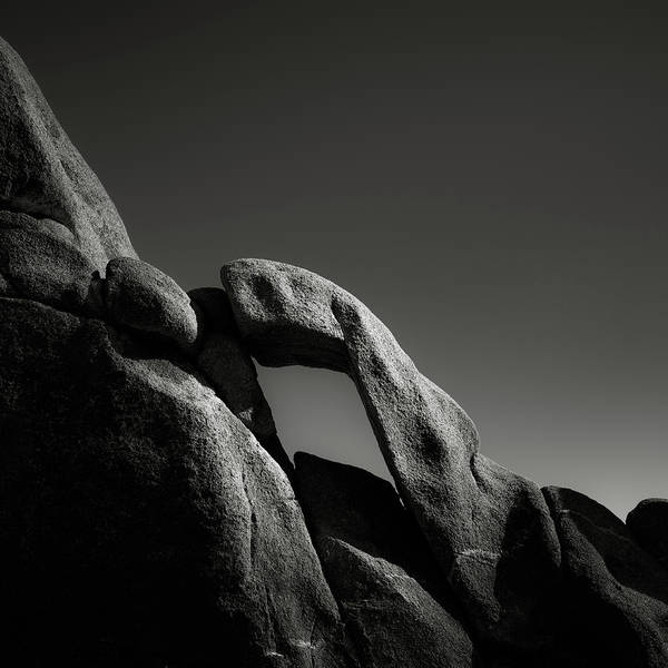 Wall Art - Photograph - Synapse In Stone by Joseph Smith