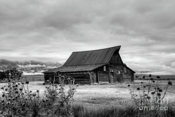Photograph - Ta Moulton Barn In Black And White by Paul Quinn