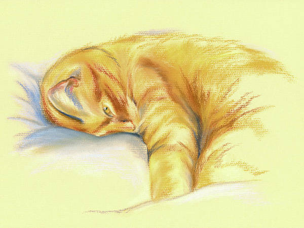Tabby Cat Relaxed Pose Art Print