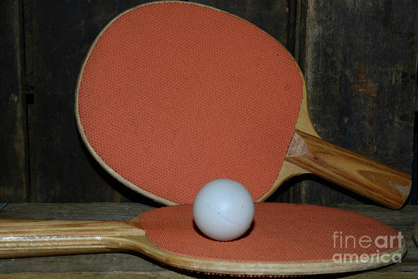Wall Art - Photograph - Table Tennis by Paul Ward
