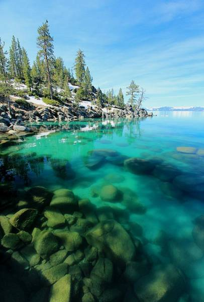 Photograph - Tahoe Soul  by Sean Sarsfield