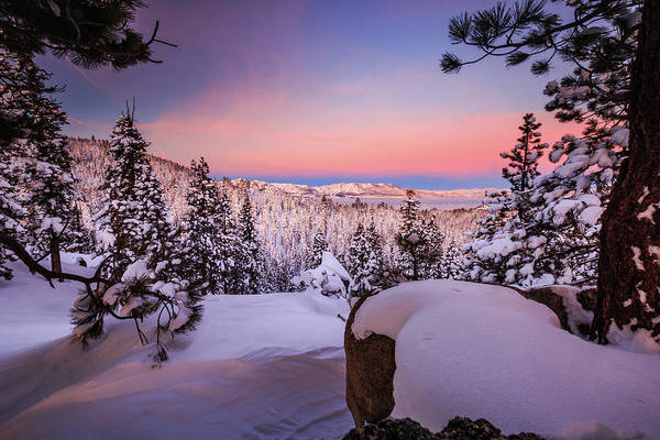Lightroom Photograph - Tahoe Sunrise Deep Within The Powder by Mike Herron