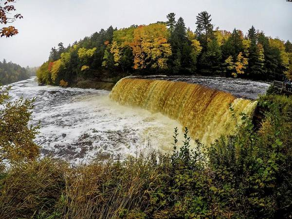 Photograph - Tahquamenon Falls G0653263 by Michael Thomas
