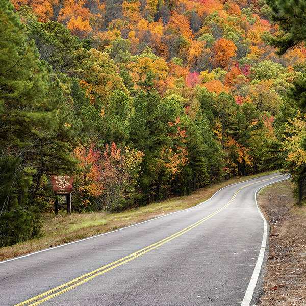Photograph - Talimena Scenic Drive - Autumn Ouachita Landscape - Square Format by Gregory Ballos