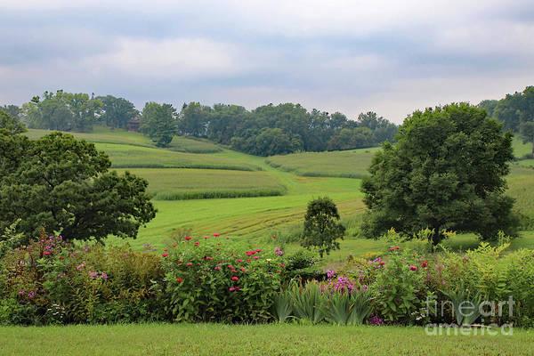 Photograph - Taliesin Landscape by PJ Boylan