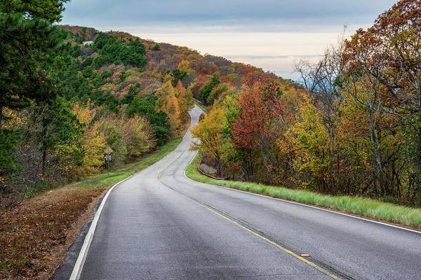 Photograph - Talimena National Scenic Byway In Autumn by Gregory Ballos