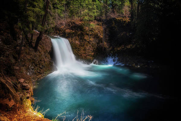 Wall Art - Photograph - Tamolitch Falls by Cat Connor