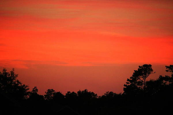 Photograph - Tangerine Sunset by Cynthia Guinn
