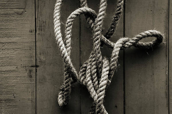 Hanging Photograph - Tangled Rope Hanging On Wooden Fence by James A. Guilliam