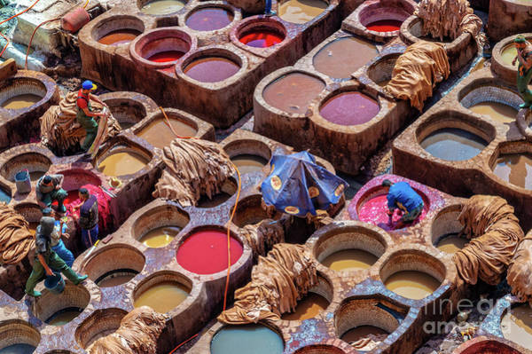 Wall Art - Photograph - Tanneries Of Fez Morocco by Louise Poggianti