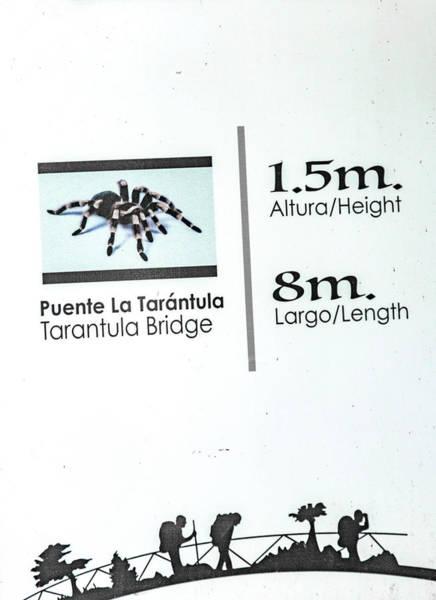 Saying Photograph - Tarantula Bridge Sign by Betsy Knapp