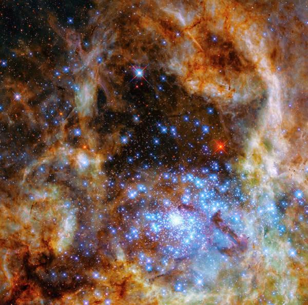 Photograph - Tarantula Nebula Star Cluster R136 by Paul W Faust - Impressions of Light