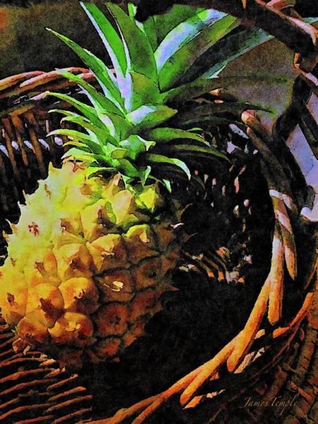Pineapple Digital Art - Tasting Hawaii by James Temple