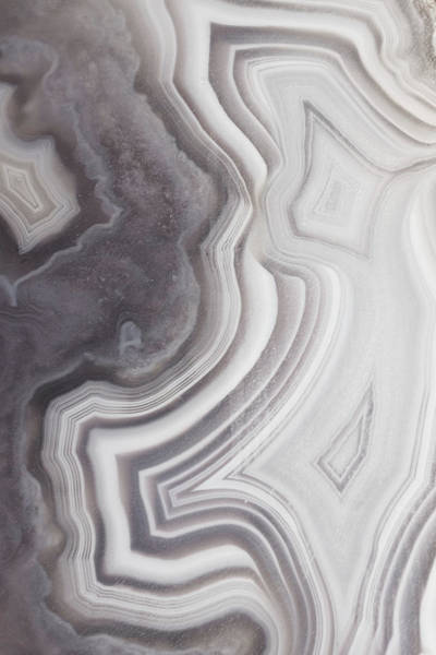 Wall Art - Photograph - Taupe Agate One by Lupen Grainne