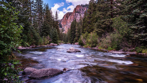 Photograph - Taylor River by Brenda Jacobs