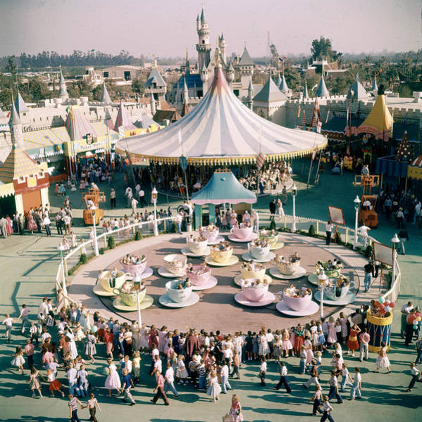 Teacups At Disneyland Art Print by Loomis Dean