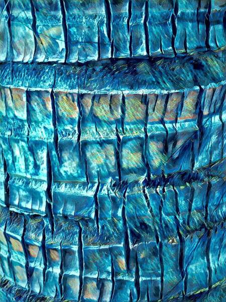 Digital Art - Teal Palm Bark by Cindy Greenstein