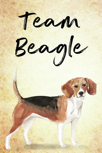 Painting - Team Beagle Cute Art For Dog Lovers by Matthias Hauser
