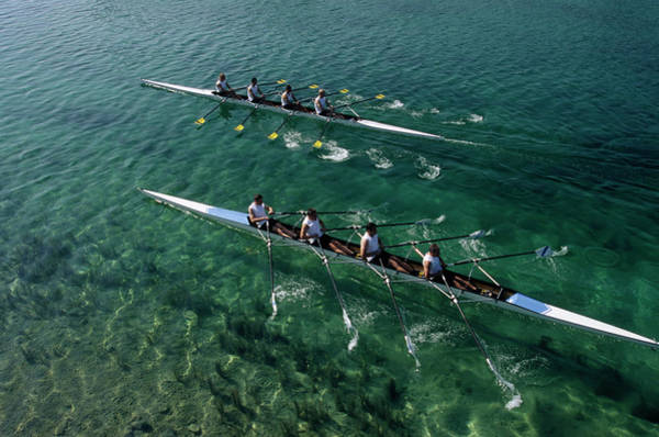 Rowing Wall Art - Photograph - Team Of Rowers Competing by Altrendo Images