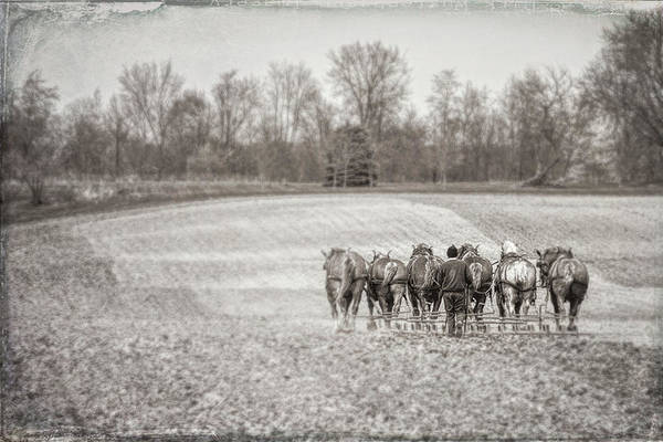 Midwest Photograph - Team Of Six Horses Tilling The Fields by Tom Mc Nemar