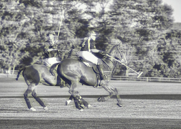 Photograph - Team Polo Playing by JAMART Photography