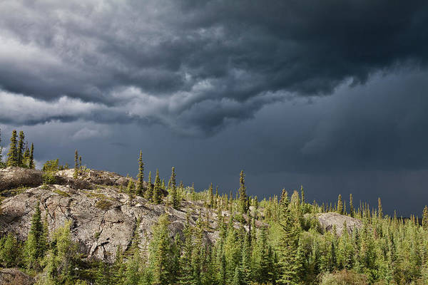 Yellowknife Wall Art - Photograph - Tears Of The Canadian Shield by Dave Brosha Photography