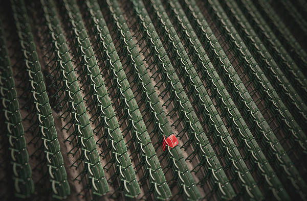 Photograph - Ted Williams Red Seat - Fenway Park by Joann Vitali