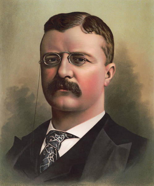 Wall Art - Painting - Teddy Roosevelt Color Portrait  by War Is Hell Store