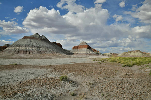 Photograph - Teepees Along Park Road In Petrified Forest Np by Ray Mathis