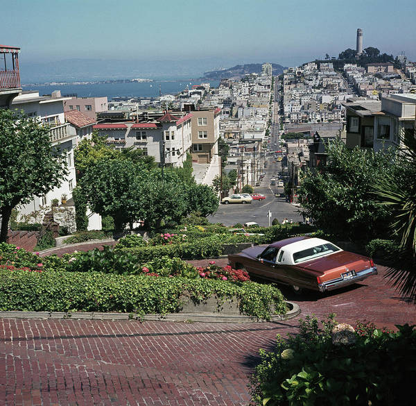 Coit Tower Photograph - Telegraph Hill by Archive Photos