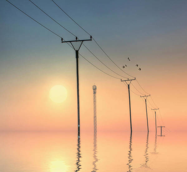 Telephone Photograph - Telephone Post At Sunset by Kurtmartin