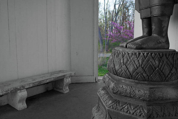Photograph - Temple Budding by Dylan Punke