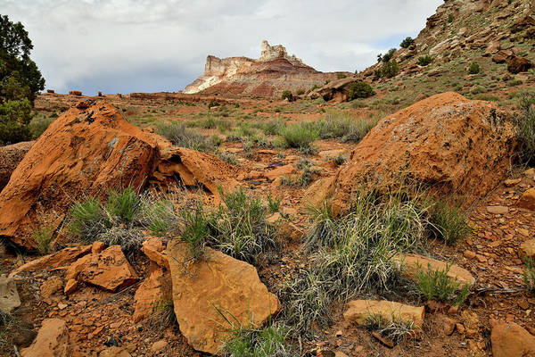 Photograph - Temple Mountain In San Rafael Swell by Ray Mathis