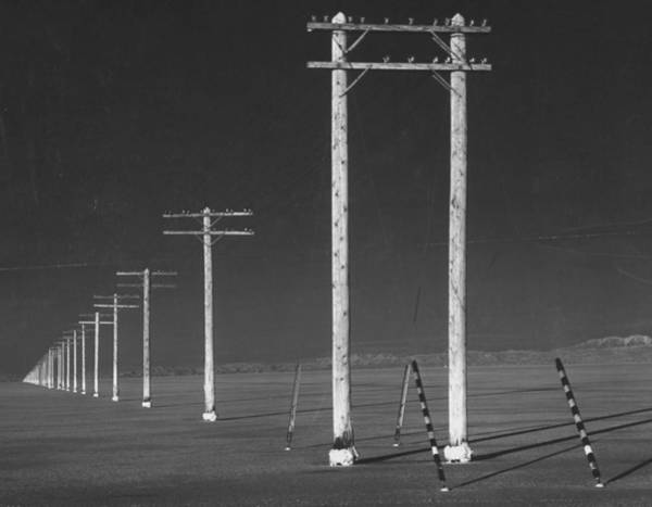 Wall Art - Photograph - Ten-mile Line Of Telephone Poles Carryin by Fritz Goro