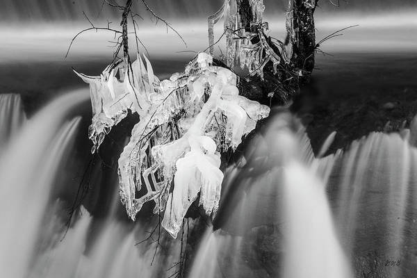 Photograph - Ten Mile River Vii Hunts Mills Bw by David Gordon