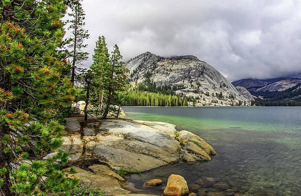 Photograph - Tenaya Lake, Yosemite by Dawn Richards