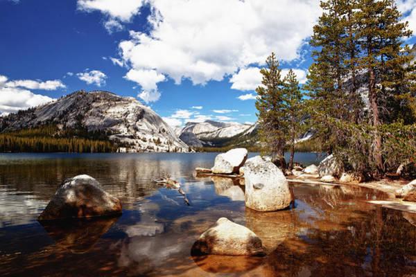 Tioga Photograph - Tenaya Lake, Yosemite National Park by Michael H Spivak