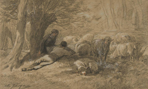 Drawing - Tending The Sheep by Charles Jacque