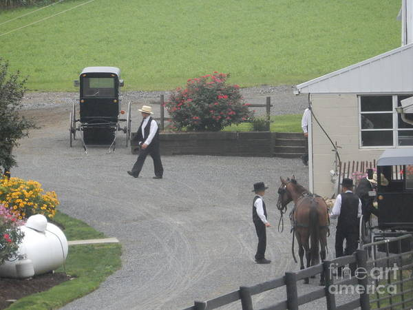 Photograph - Tending To A Horse Before Church by Christine Clark