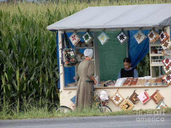 Photograph - Tending To The Family Farm Stand by Christine Clark