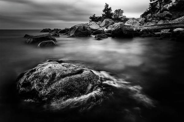 Photograph - Tenuous Peace Bw by Simmie Reagor