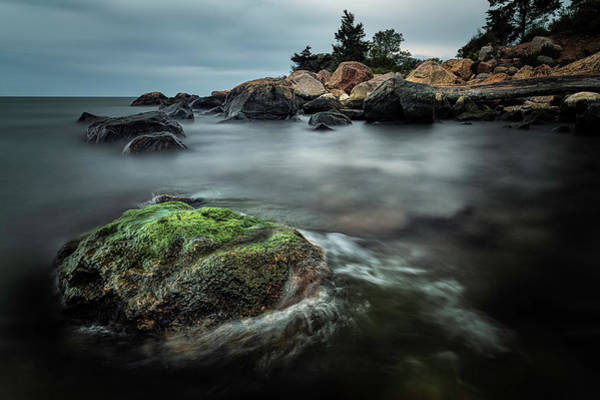 Photograph - Tenuous Peace by Simmie Reagor
