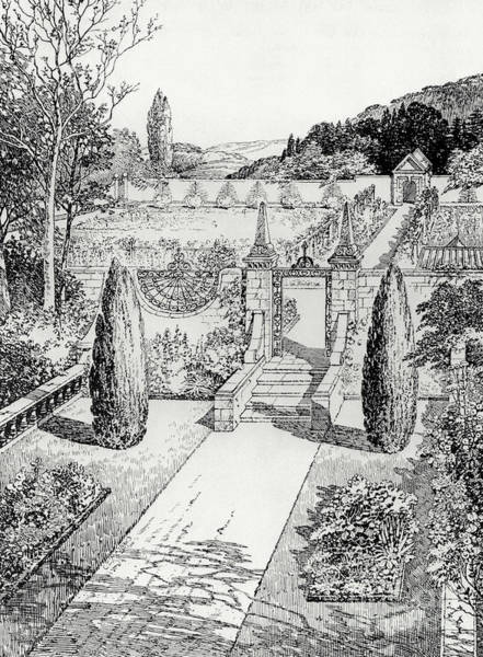 Black And White Nature Drawing - Terrace Walk And Herb Garden by Thomas Hayton Mawson