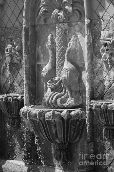 Photograph - Terracotta Fountain In Black And White by Colleen Cornelius