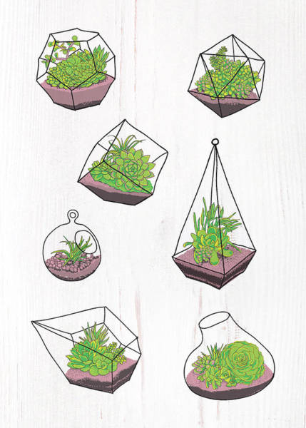 Painting - Terrariums by Jen Montgomery