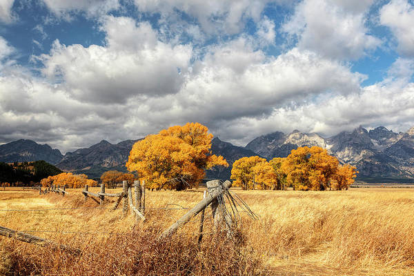 Photograph - Teton Autumn Fields by Wes and Dotty Weber